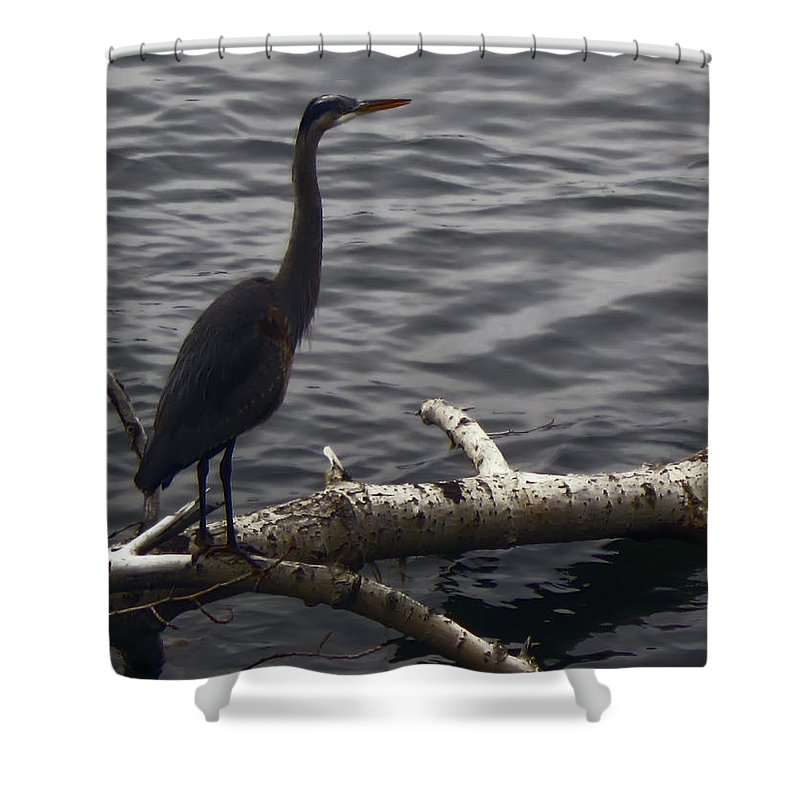 Cranes Shower Curtain featuring the photograph The River Master by Daniel Hagerman