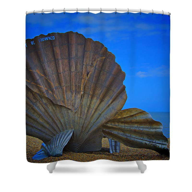 Scallop Shell Shower Curtain featuring the photograph The Scallop by Chris Thaxter