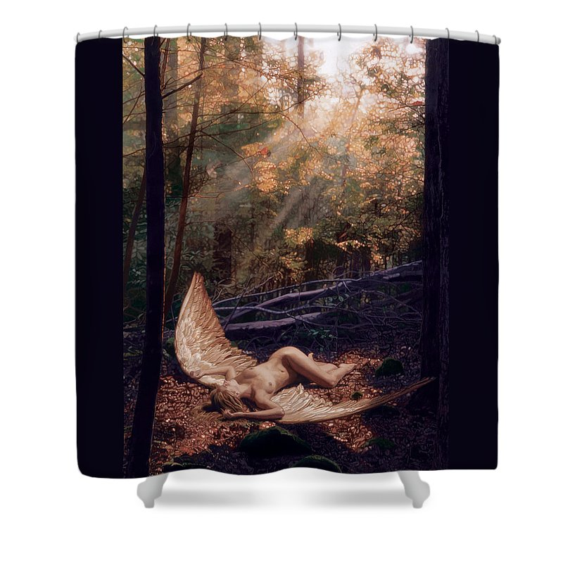 Romance Shower Curtain featuring the painting The Secret Forest by Patrick Whelan