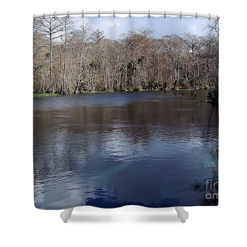 River Shower Curtain featuring the photograph The Silver River by D Hackett