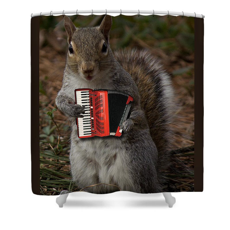 Furry Shower Curtain Featuring The Photograph Squirrel And His Accordion By Sandra Clark