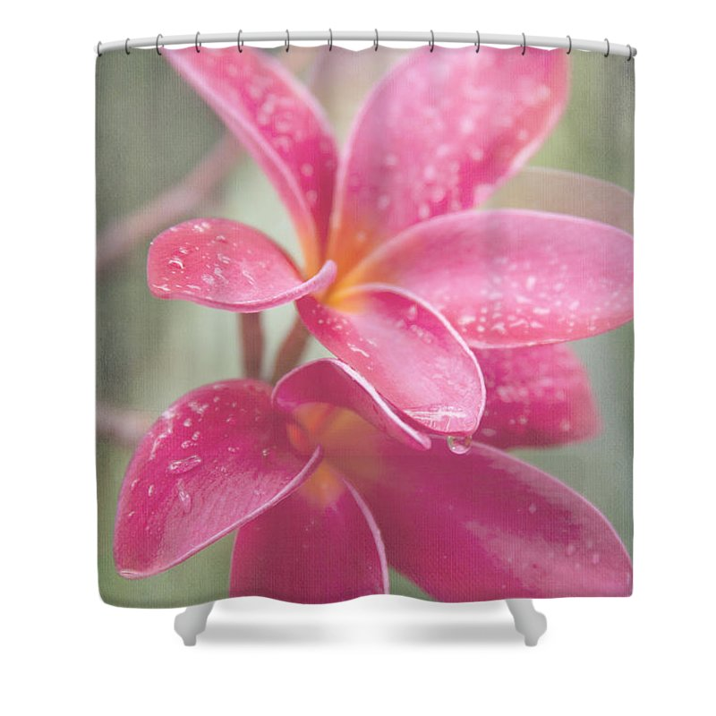 Aloha Shower Curtain featuring the photograph The Temple Tree by Sharon Mau