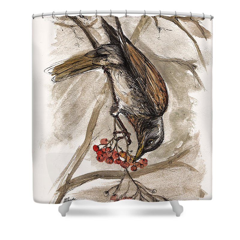 Thrush Shower Curtain featuring the painting The Thrush Eating Cranberries by Angel Ciesniarska