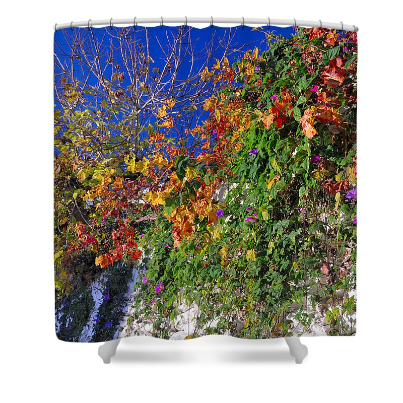 Landscapes Shower Curtain featuring the photograph The Wall by Guido Montanes Castillo