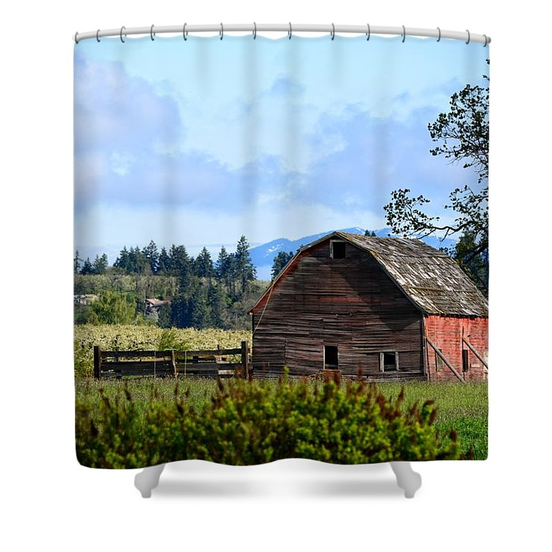 Barn Shower Curtain featuring the photograph The Warmth Of The Barn by Image Takers Photography LLC- Laura Morgan
