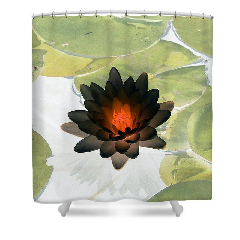 Water Lilies Shower Curtain featuring the photograph The Water Lilies Collection - Photopower 1034 by Pamela Critchlow