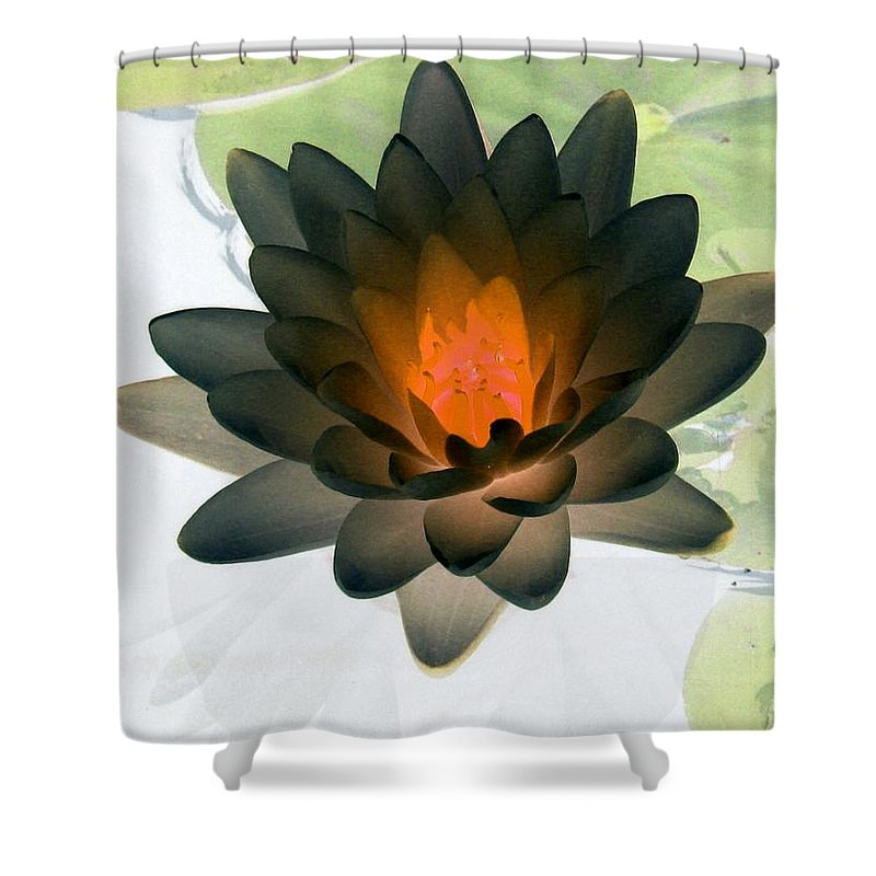 Water Lilies Shower Curtain featuring the photograph The Water Lilies Collection - Photopower 1035 by Pamela Critchlow
