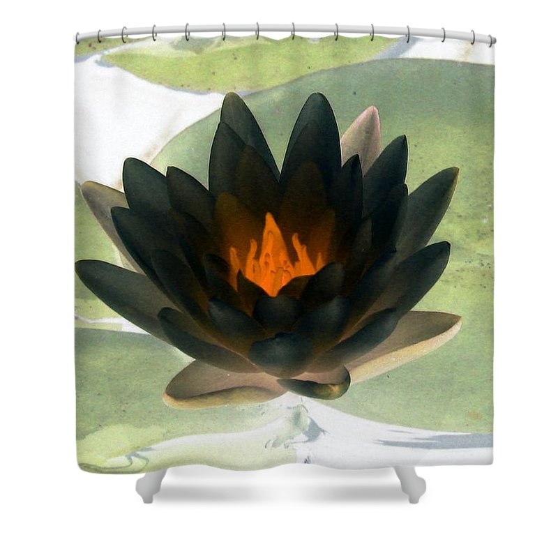 Water Lilies Shower Curtain featuring the photograph The Water Lilies Collection - Photopower 1037 by Pamela Critchlow