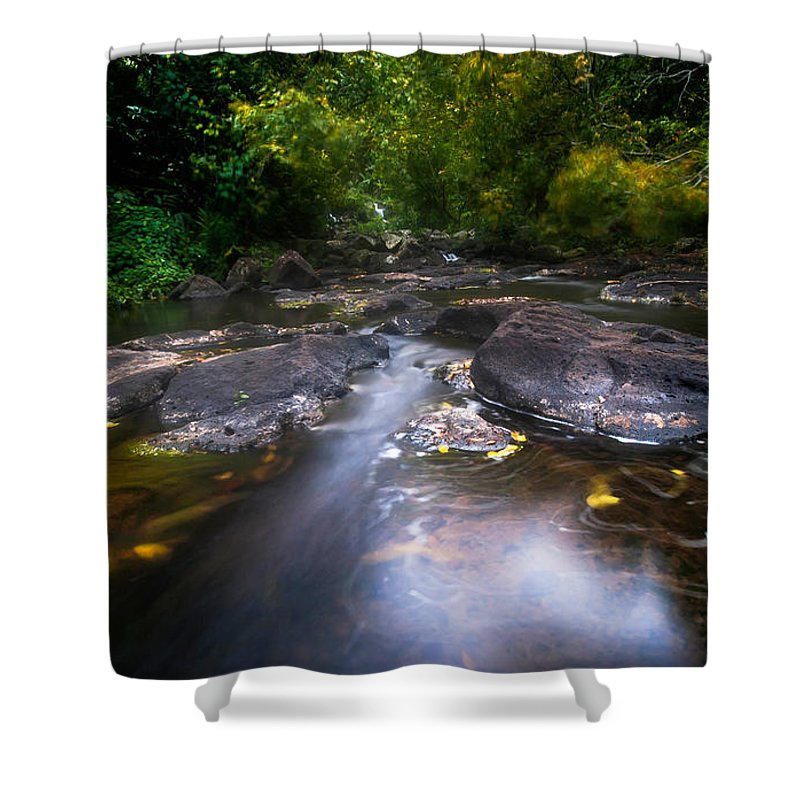 Trees Shower Curtain featuring the photograph The Waters Of The Eureka Waterfalls. Mauritius by Jenny Rainbow