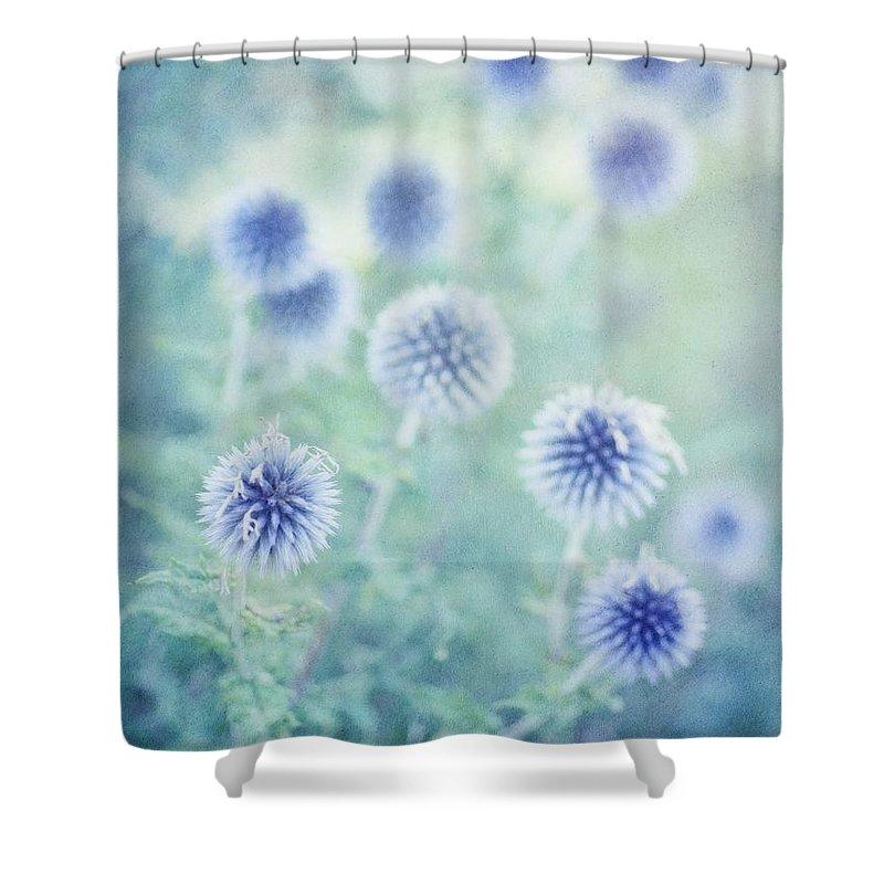 Globethistle Shower Curtain featuring the photograph Thistle Dream by Priska Wettstein