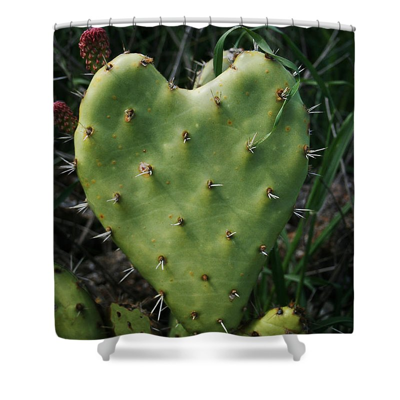 Thorny Heart Shower Curtain featuring the photograph Thorny Heart by Ellen Henneke