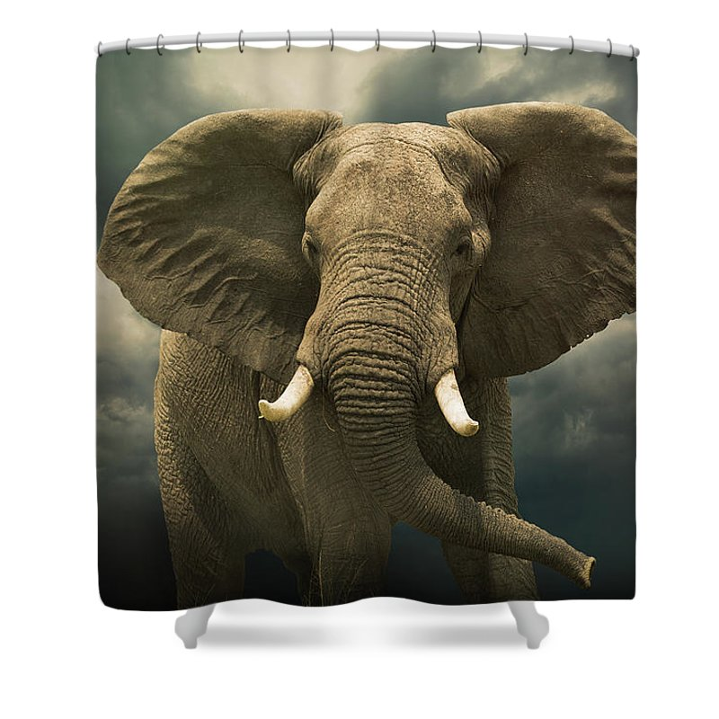 Kenya Shower Curtain featuring the photograph Threatening African Elephant Under by Buena Vista Images