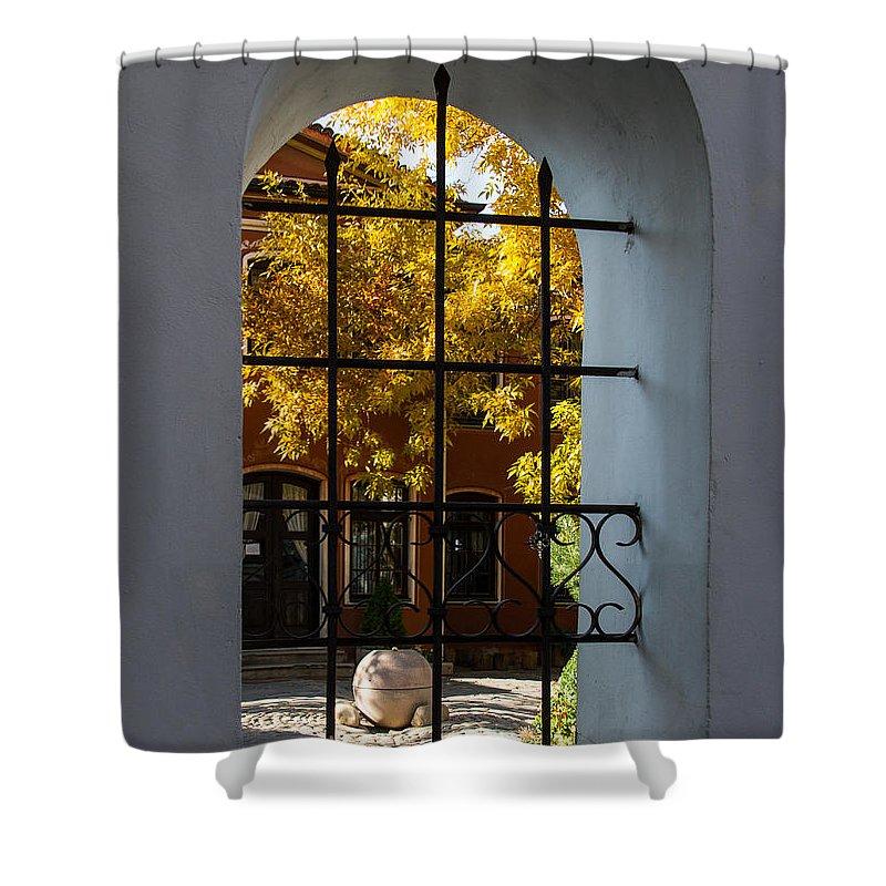 Fall Shower Curtain featuring the photograph Through The Fence Window by Georgia Mizuleva
