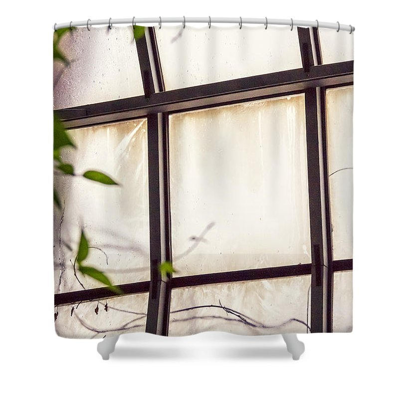 Glass Shower Curtain featuring the photograph Through The Glass by Margie Hurwich