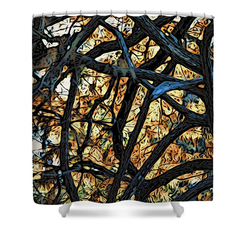 Trees Shower Curtain featuring the photograph Through The Trees by Jacklyn Duryea Fraizer