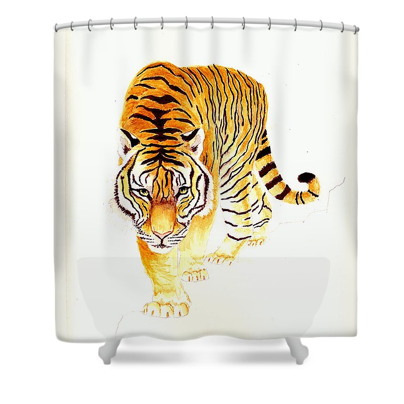 Tiger Shower Curtain featuring the painting Tiger by Michael Vigliotti