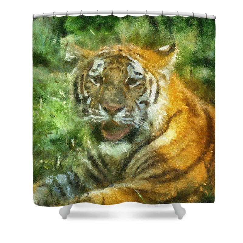Feline Shower Curtain featuring the photograph Tiger Resting Photo Art 05 by Thomas Woolworth