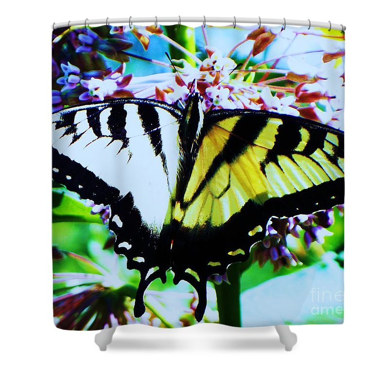 Butterfly Shower Curtain featuring the photograph Tiger Swallowtail Butterfly by Eric Schiabor