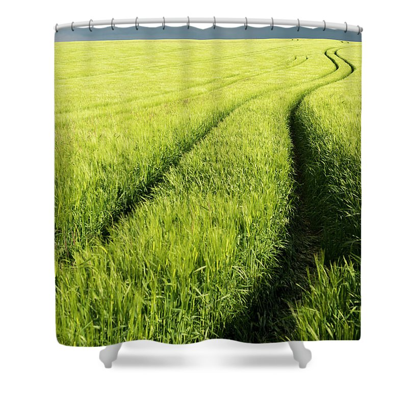 Scenics Shower Curtain featuring the photograph Tire Tracks In Grain Field by Thomas Winz