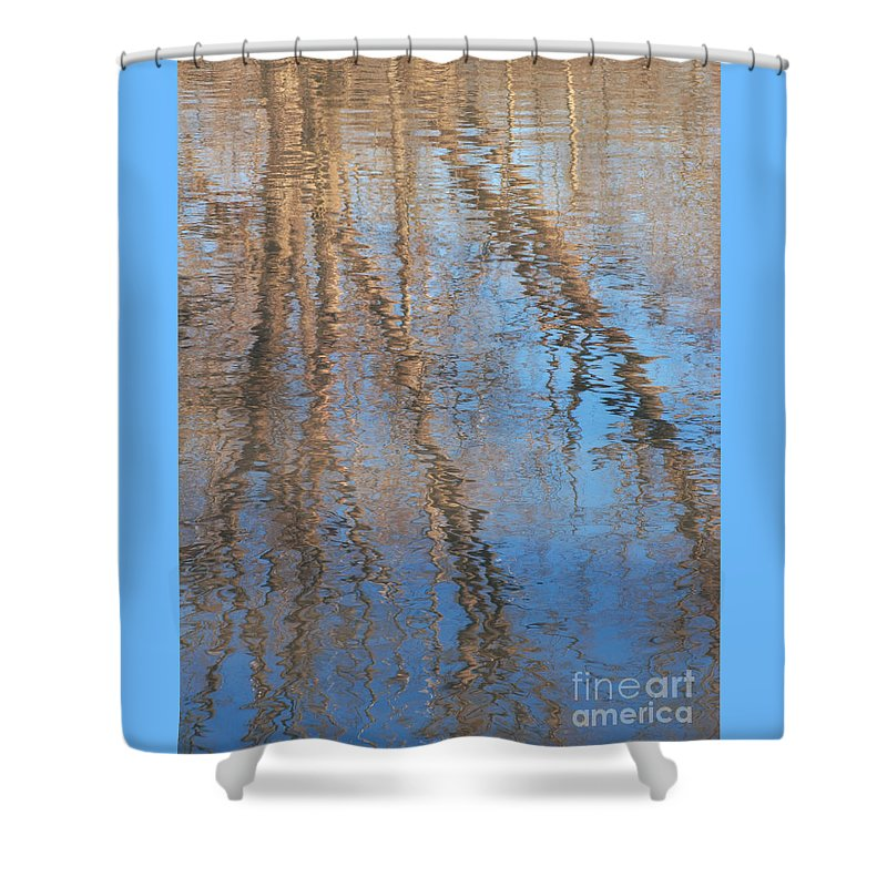 Tree Shower Curtain featuring the photograph Topside Down by Ann Horn