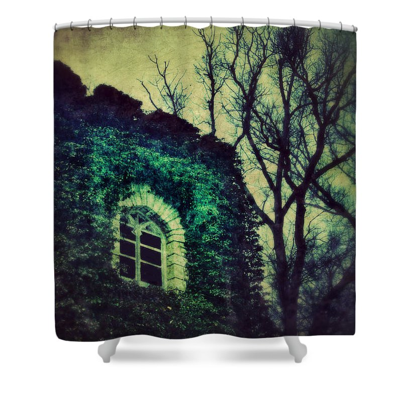 Gothic Shower Curtain featuring the photograph Tower And Trees by Jill Battaglia