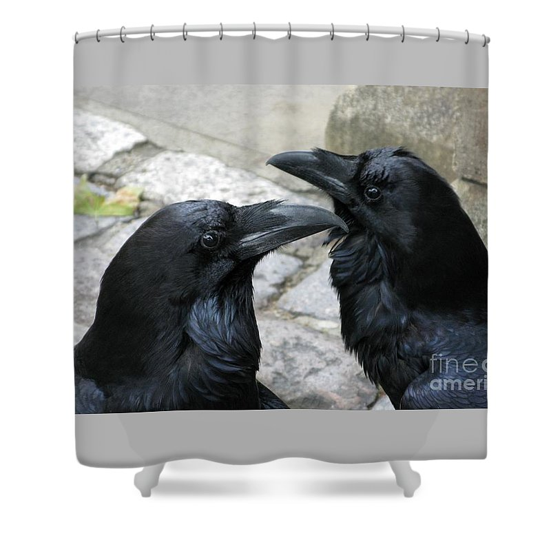 Raven Shower Curtain featuring the photograph Tower Ravens by Ann Horn