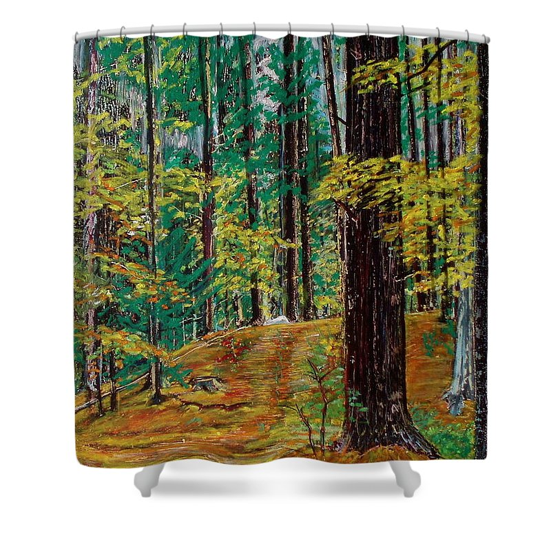 New Hampshire Shower Curtain featuring the pastel Trail At Wason Pond by Sean Connolly