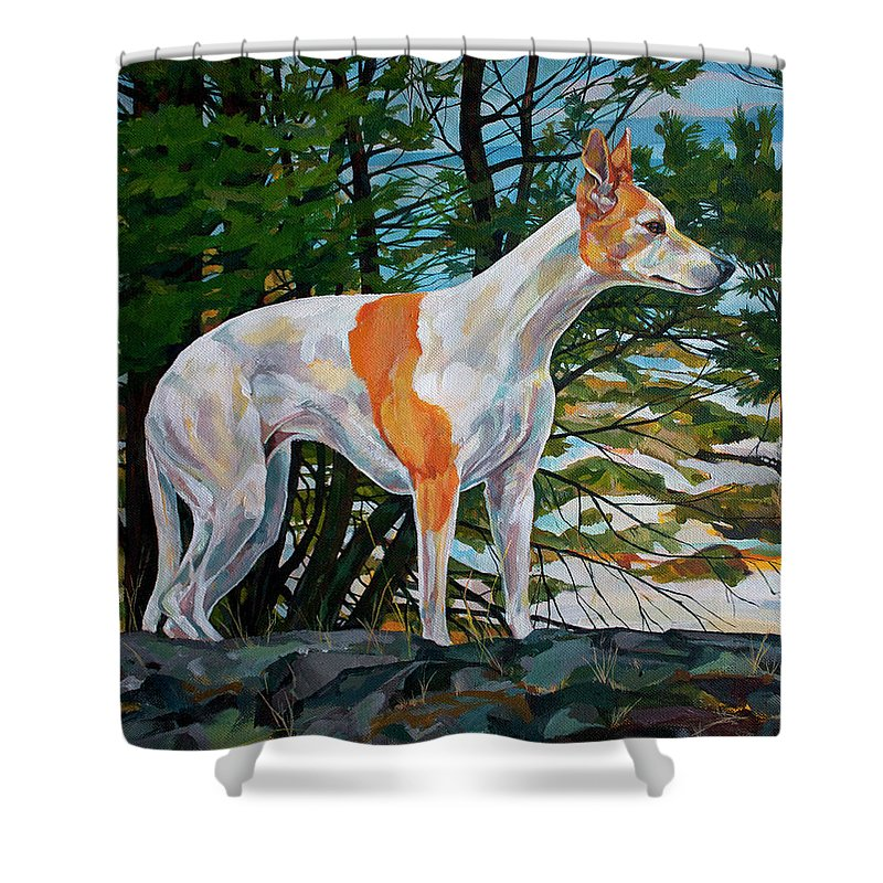 Whippet Shower Curtain featuring the painting Trailblazer by Derrick Higgins
