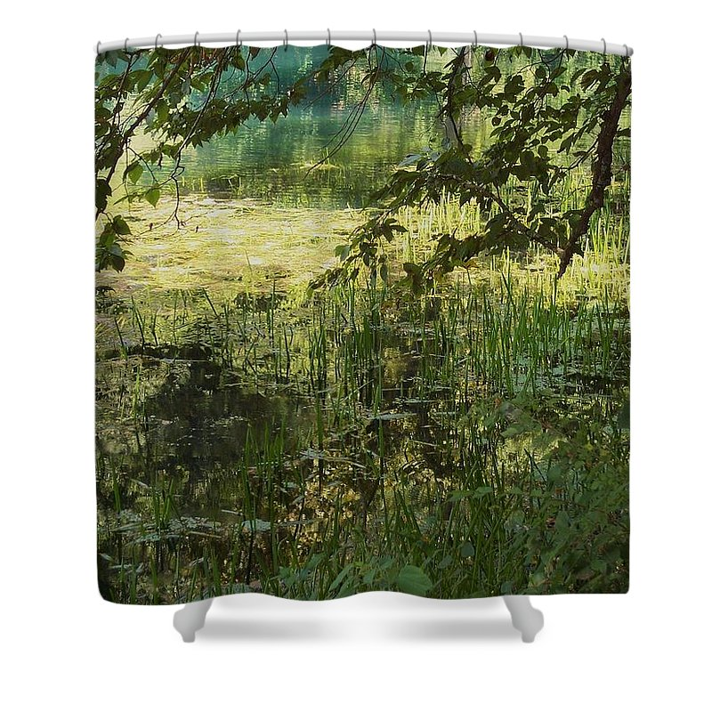 Water Shower Curtain featuring the photograph Tranquility by Mary Wolf