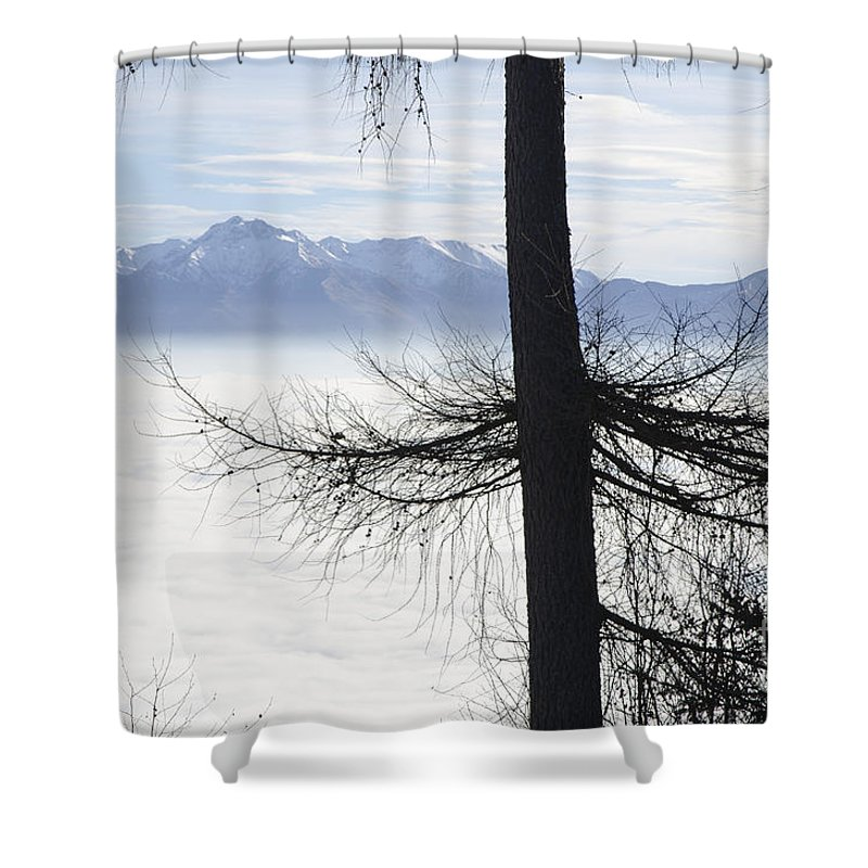 Sea Of Fog Shower Curtain featuring the photograph Tree And Fog by Mats Silvan