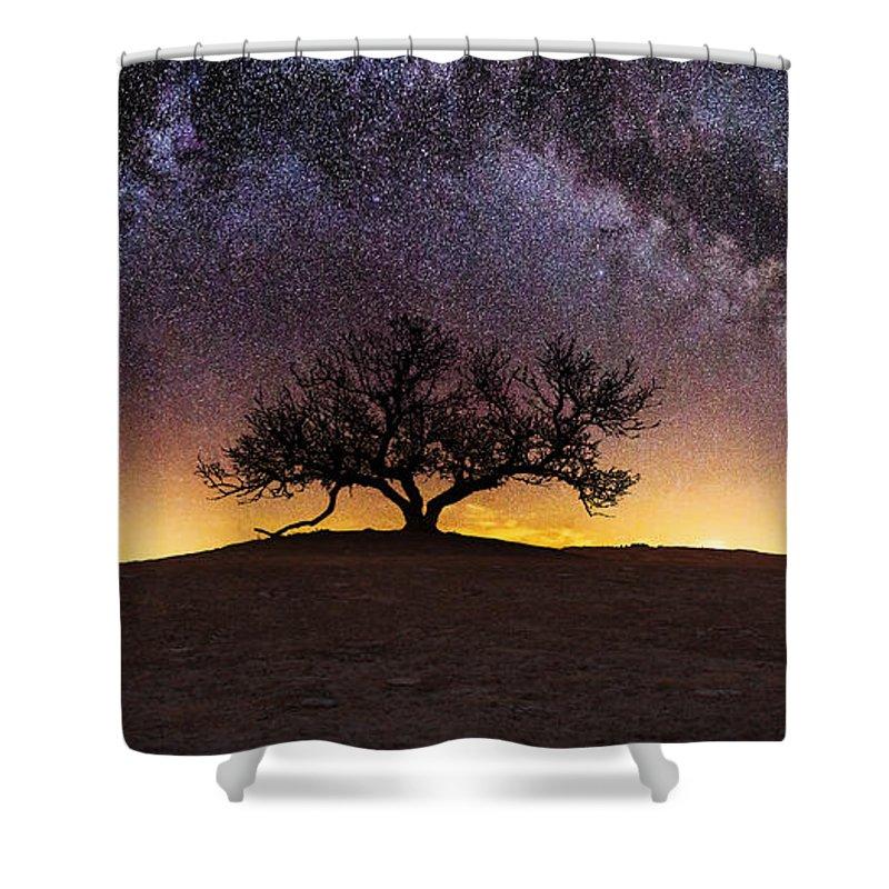 Panorama Shower Curtains