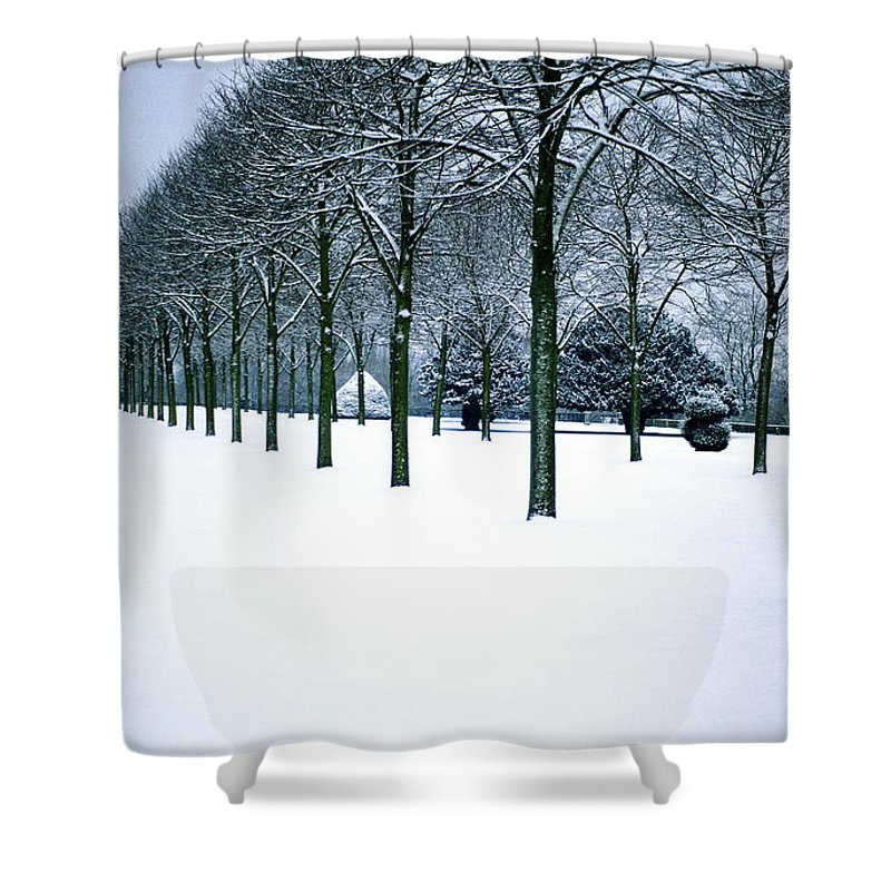 Trees Shower Curtain featuring the photograph Trees In Snow by Lana Enderle