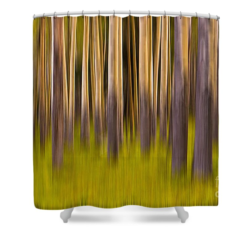 Digital Art Shower Curtain featuring the digital art Trees by Jerry Fornarotto