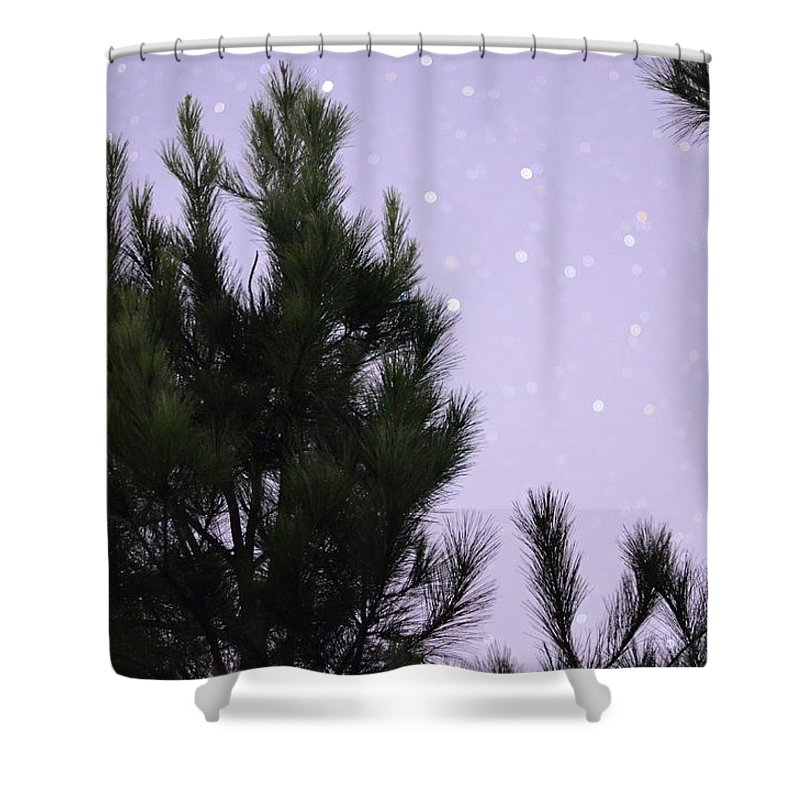 Trees Under The Stars Shower Curtain For Sale By David Morefield
