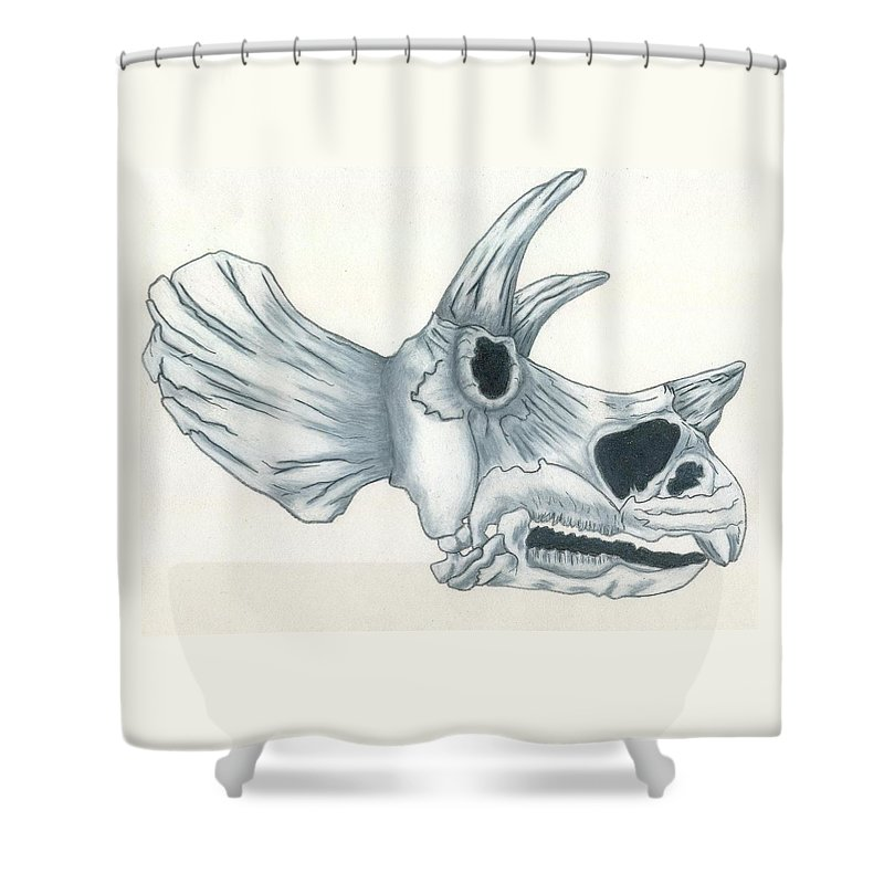 Dinosaur Shower Curtain featuring the drawing Tricerotops Skull by Micah Guenther