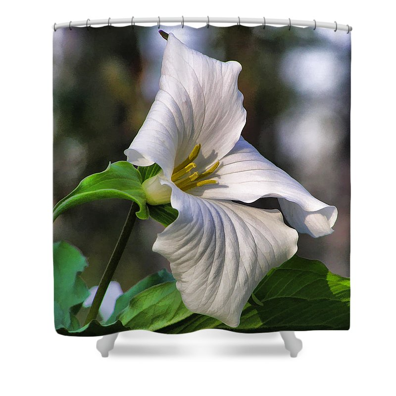 Trillium Shower Curtain featuring the painting Trillium Purity by Christopher Arndt