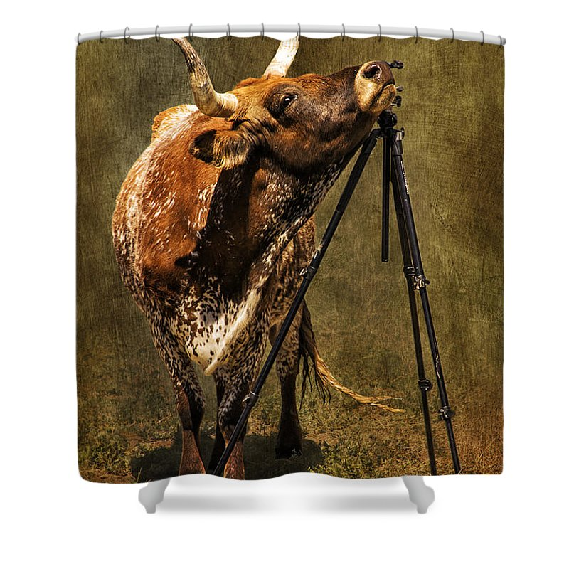 Longhorn Shower Curtain featuring the photograph Tripods Are Our Friends by Priscilla Burgers