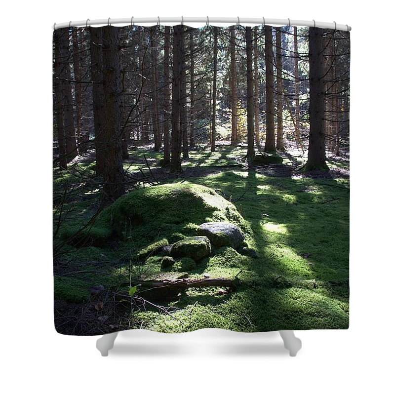 Forest Shower Curtain featuring the photograph Troll's Grave by Valerie Kirkwood