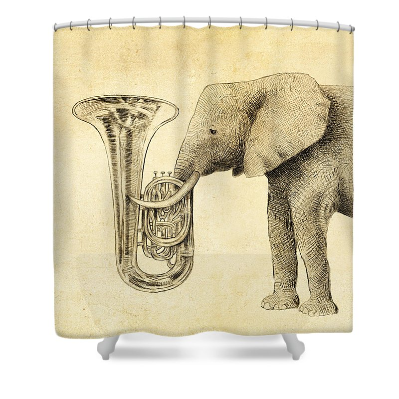 Animals Drawings Shower Curtains