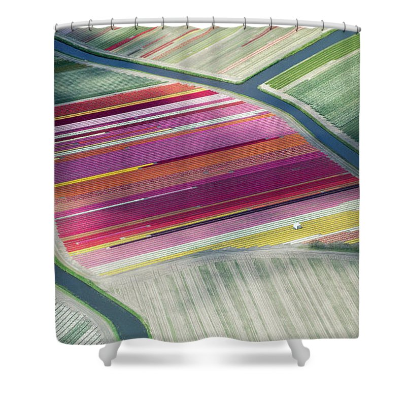 Curve Shower Curtain featuring the photograph Tulip Fields, Aerial View, South by Frans Sellies