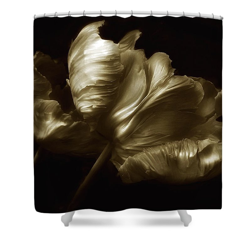 Flowers Shower Curtain featuring the photograph Tulips In Sepia by Jessica Jenney