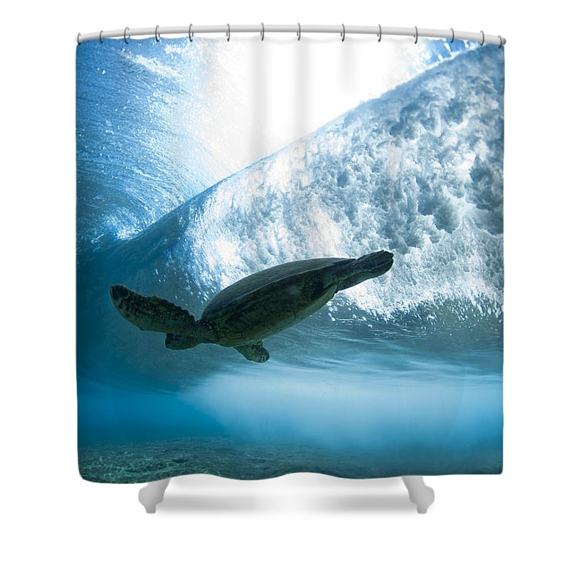 Under Water Shower Curtain featuring the photograph Turtle Clouds by Sean Davey