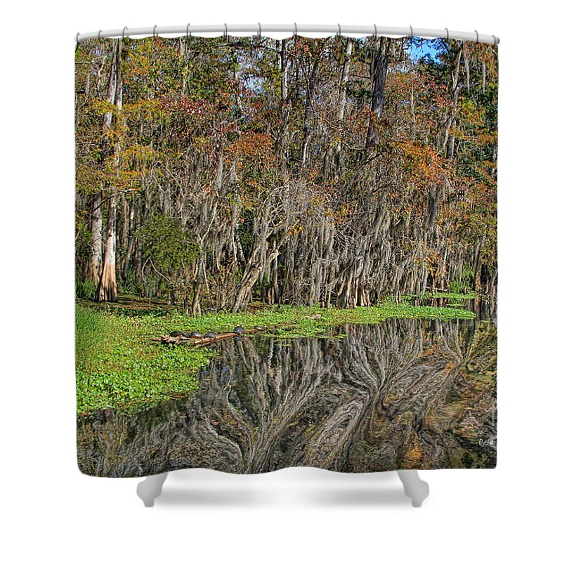 Nature Shower Curtain featuring the photograph Turtle Haven by Deborah Benoit