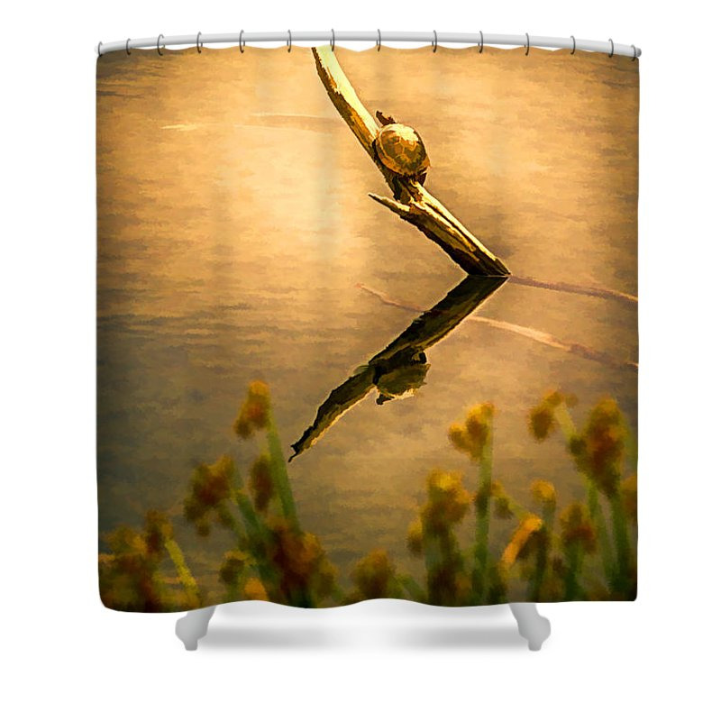 Turtle Shower Curtain featuring the painting Turtle On Golden Pond by John Haldane