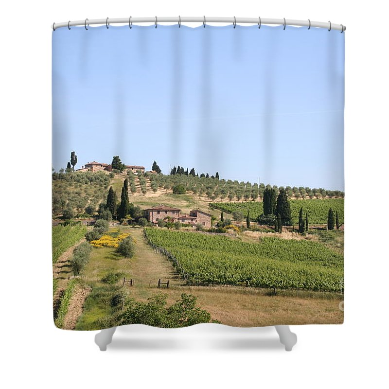 Vineyard Shower Curtain featuring the photograph Tuscany Vineyard by Christiane Schulze Art And Photography