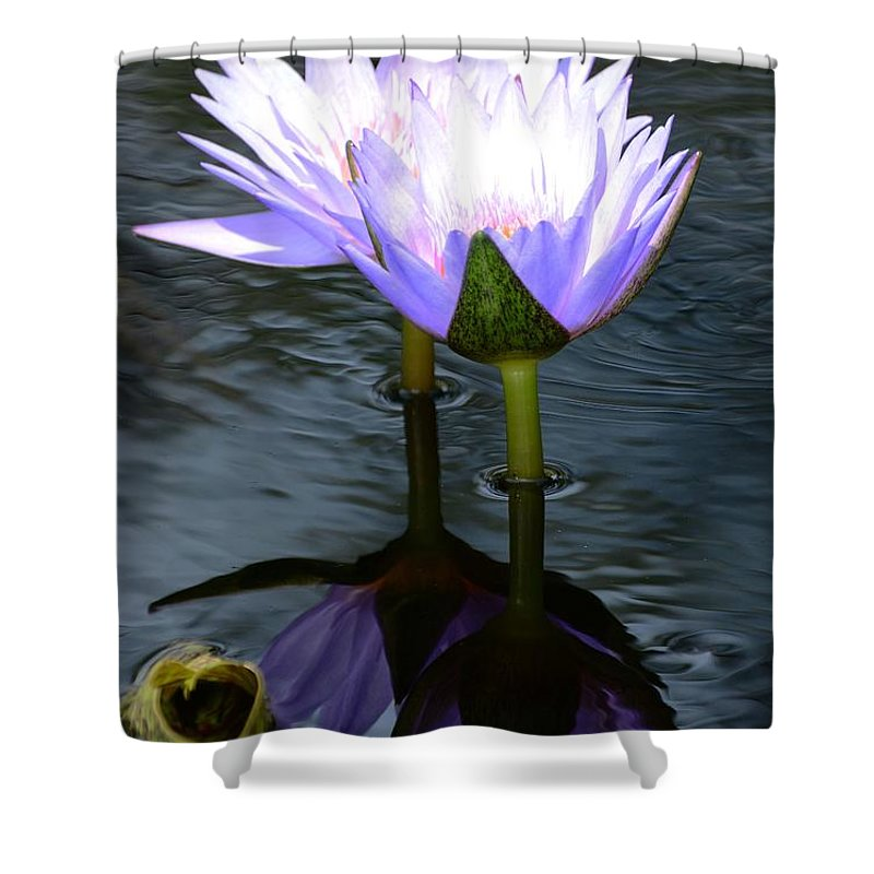 Flower Shower Curtain featuring the photograph Two Lilies And A Heart by Cindy Manero