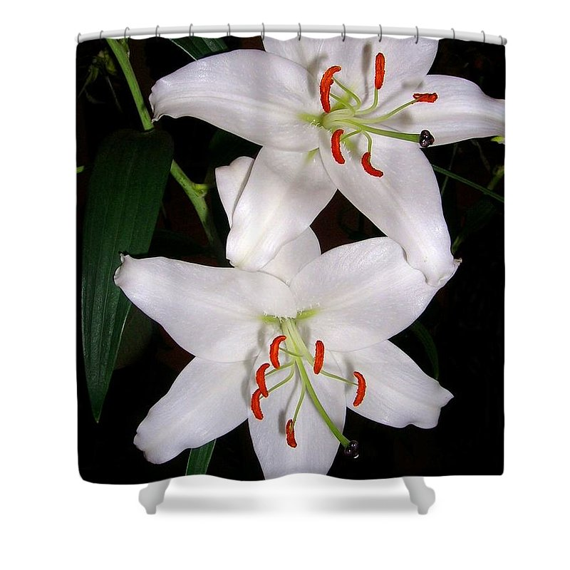 Flower Shower Curtain featuring the photograph Two Lilies by Valerie Ornstein