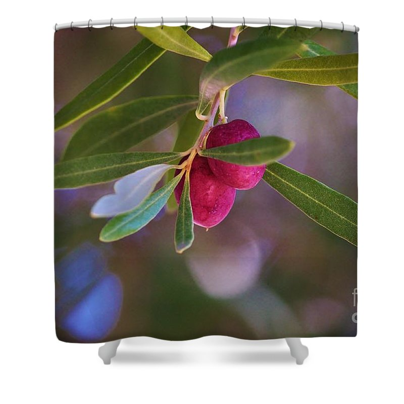 Olives Shower Curtain featuring the photograph Two Olives Please by Marcia Breznay
