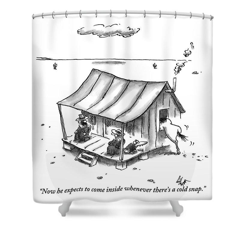 Inside Shower Curtains