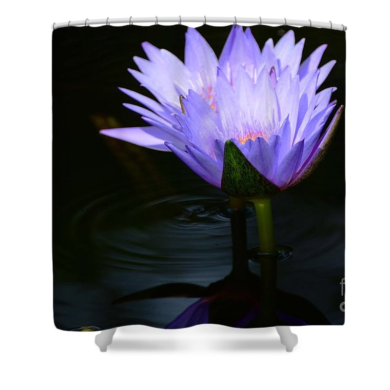 Water Lilies Shower Curtain featuring the photograph Two Together by Cindy Manero